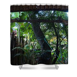 Toros Shower Curtain