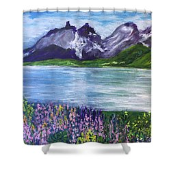 Torres Del Paine In Chile Shower Curtain
