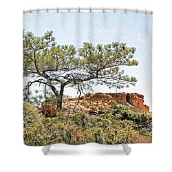 Torrey Pine 1 Shower Curtain