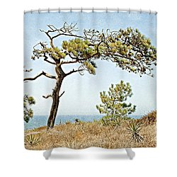 Torrey Pine 3 Shower Curtain