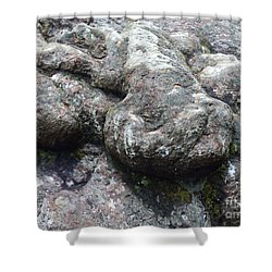 Tortoise In A Tree -2 Shower Curtain