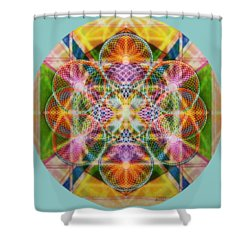 Torusphere Synthesis Bright Beginning Soulin I Shower Curtain