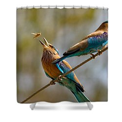 Tossed Meal Shower Curtain