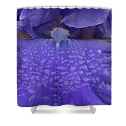 Shower Curtain featuring the photograph Totally Blue Iris by Jean Noren