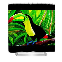 Toucan Sam Shower Curtain by Anne Marie Brown