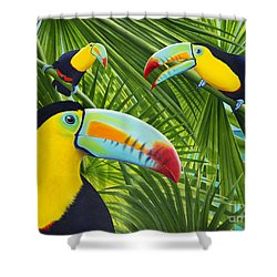 Toucan Threesome Shower Curtain