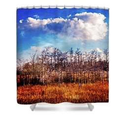 Shower Curtain featuring the photograph Touch Of Autumn In The Glades by Debra and Dave Vanderlaan