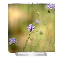 Touch Of Lavender Light Shower Curtain