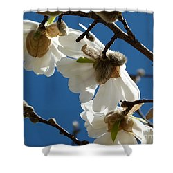 Touch Of Spring Shower Curtain by Jane Ford