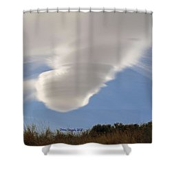Touchdown Shower Curtain by Donna Kennedy