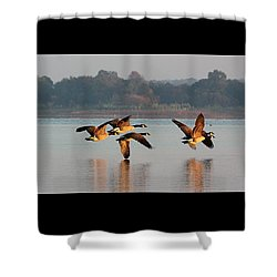 Touching Down At Sunrise Shower Curtain by Sheila Brown