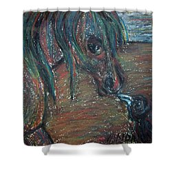 Touching Noses Shower Curtain