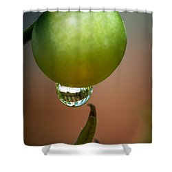 Touching Worlds Shower Curtain