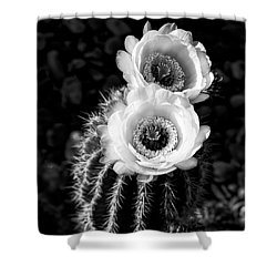 Tourch Cactus Bloom Shower Curtain