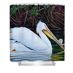 Touring Pelican Shower Curtain