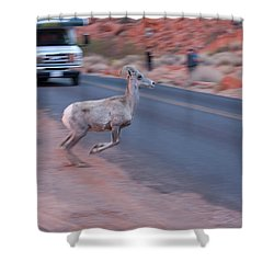 Tourists Intrusion In Nature Shower Curtain