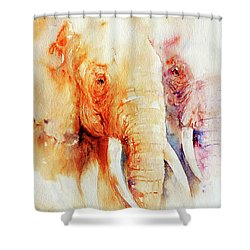Tow Of A Kind Shower Curtain