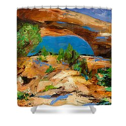 Toward The Arch  Shower Curtain by Elise Palmigiani