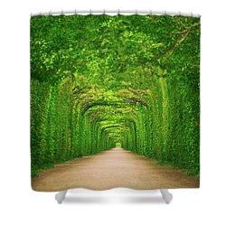Towards Shower Curtain