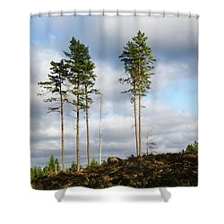 Shower Curtain featuring the photograph Towards The Sky by Kennerth and Birgitta Kullman