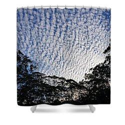 Towen Mountain  Shower Curtain