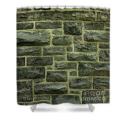 Tower Wall Shower Curtain