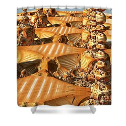 Towers And Patterns Shower Curtain