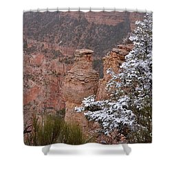 Towers In The Snow Shower Curtain by Debby Pueschel