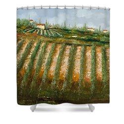 Tra I Filari Nella Vigna Shower Curtain by Guido Borelli