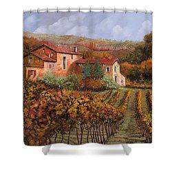 tra le vigne a Montalcino Shower Curtain by Guido Borelli