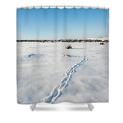 Tracks In The Snow Shower Curtain