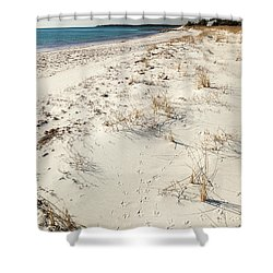 Tracks On The Beach Shower Curtain by Michelle Wiarda