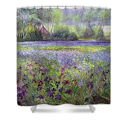 Trackway Past The Iris Field Shower Curtain by Timothy Easton