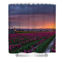 Shower Curtain featuring the photograph Tractor Waits For Morning by Mike Reid