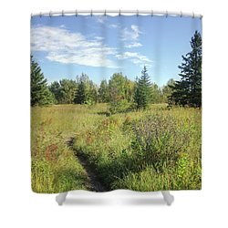 Trail In September Meadow Shower Curtain