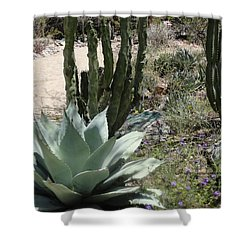 Trail Of Cactus Shower Curtain