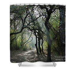 Trail Of Light Shower Curtain