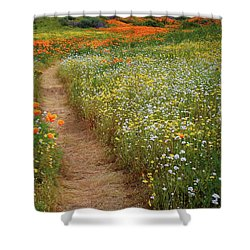 Shower Curtain featuring the photograph Trail Of Wildflowers At Diamond Lake In California by Jetson Nguyen