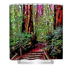 Shower Curtain featuring the digital art Trail Through The Redwoods - Tamalpais California by Joel Bruce Wallach