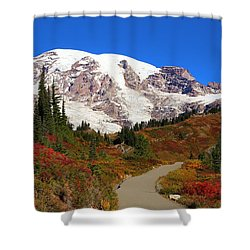Shower Curtain featuring the photograph Trail To Myrtle Falls 2 by Lynn Hopwood