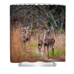 Trail Watchers Shower Curtain