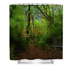 Trailside Bench Shower Curtain by Cedric Hampton