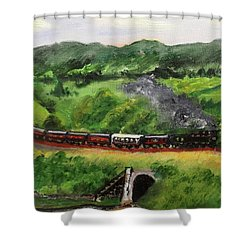 Train In The Country Shower Curtain