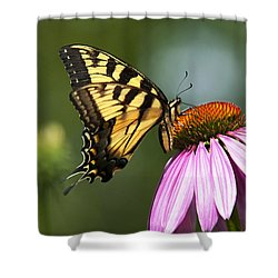 Tranquil Butterfly Shower Curtain by Christina Rollo
