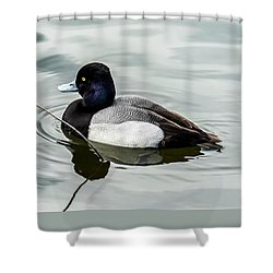 Tranquil Duck In Pond Shower Curtain