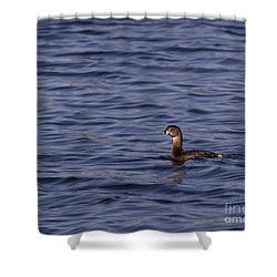 Tranquil In Blue Shower Curtain