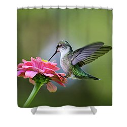 Tranquil Joy Shower Curtain