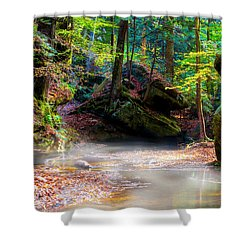 Shower Curtain featuring the photograph Tranquil Mist by David Morefield