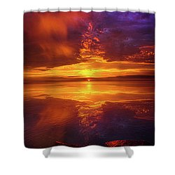 Tranquil Oasis Shower Curtain by Phil Koch