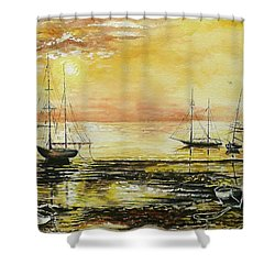 Tranquil Tide Shower Curtain by Andrew Read